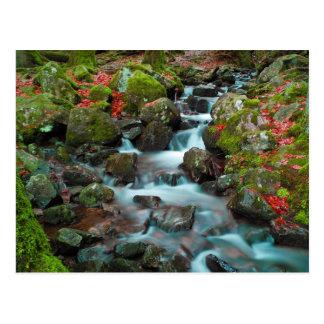 Grand Cascades Tendons Waterfall Postcard