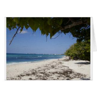 Grand Cayman Beach Greeting Card