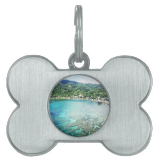 Grand Cayman Coral Reef Pet ID Tag