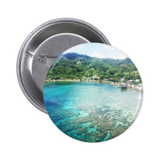 Grand Cayman Coral Reef Pinback Button