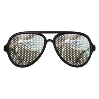 Grand Cayman Iguana Sunglasses