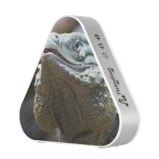 Grand Cayman Iguana Bluetooth Speaker