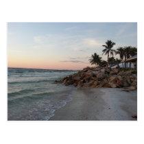 Grand Cayman Island Art Gifts Postcard