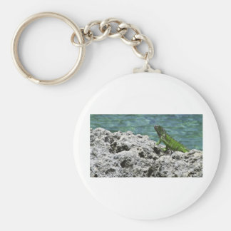 Grand Cayman Islands Green Iguana Keychain