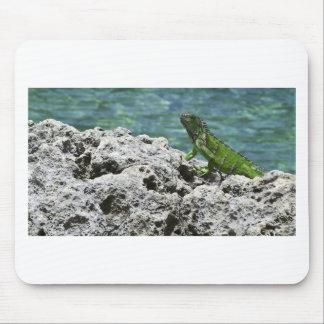 Grand Cayman Islands Green Iguana Mouse Pad
