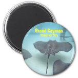 cayman, magnet, magnets, fridge, kitchen,