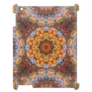 Grand Galactic Alignment Mandala iPad Covers