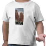 Grand Junction, CO - vista del monumento nacional Camisetas