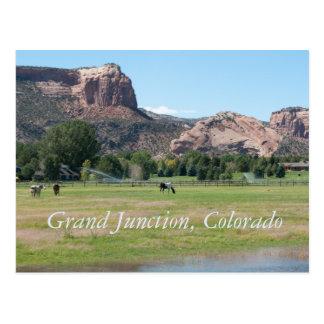 Grand Junction, Colorado Postcard