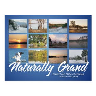 Grand Lake Oklahoma naturally post card