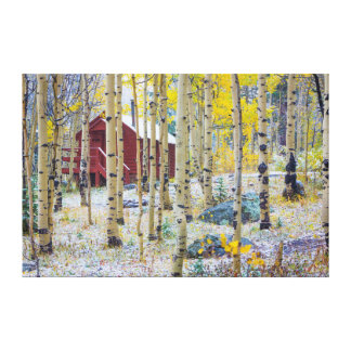 Grand Mesa Solitary cabin in a forest Gallery Wrap Canvas