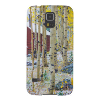 Grand Mesa Solitary cabin in a forest Galaxy S5 Case