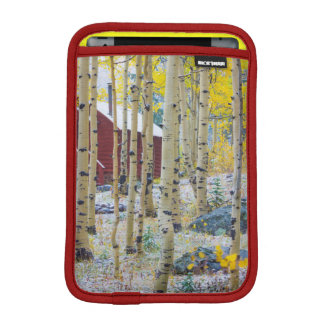 Grand Mesa Solitary cabin in a forest iPad Mini Sleeve