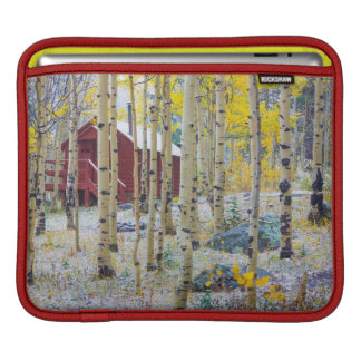 Grand Mesa Solitary cabin in a forest iPad Sleeves
