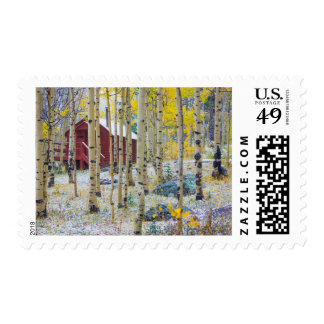 Grand Mesa Solitary cabin in a forest Postage