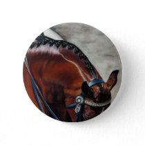 Grand Prix dressage horse bay riding Button