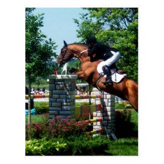 Grand Prix Horse Postcards