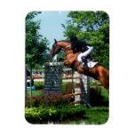 Grand Prix Horse Premium Magnet Rectangular Magnet