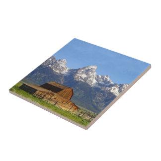 Grand Teton mountains Tile