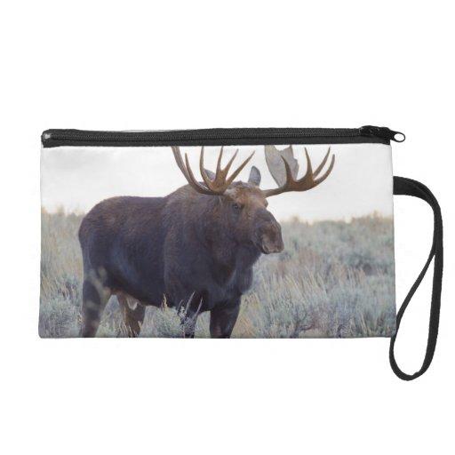 Grand Teton National Park, Bull Moose Wristlet Purse