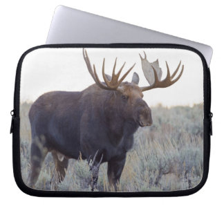 Grand Teton National Park, Bull Moose Computer Sleeve
