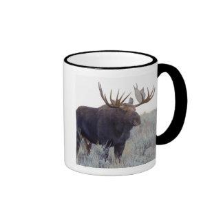 Grand Teton National Park, Bull Moose Ringer Mug