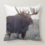 Grand Teton National Park, Bull Moose Throw Pillow