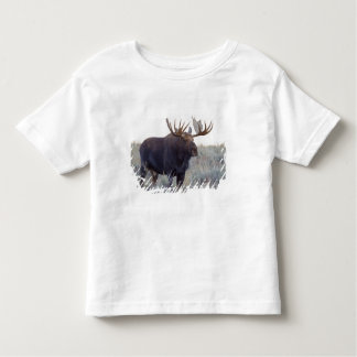 Grand Teton National Park, Bull Moose Toddler T-shirt