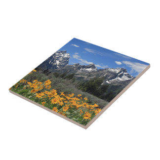 Grand Teton National Park Ceramic Tiles