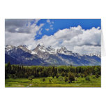Grand Teton National Park. Greeting Cards
