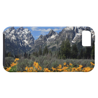 Grand Teton National Park iPhone SE/5/5s Case