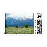 Grand Teton National Park Stamp