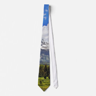 Grand Teton National Park. Tie