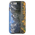 Grand Teton National Park Tough iPhone 6 Case