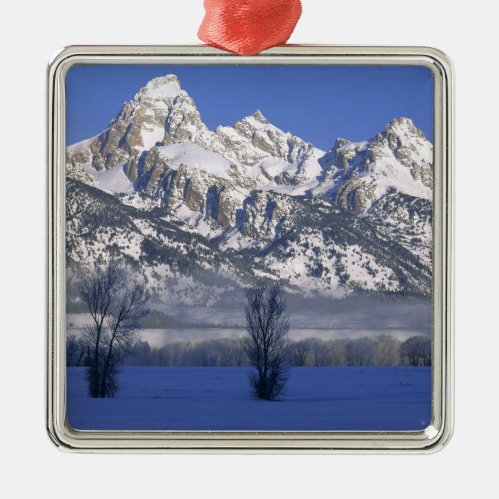 GRAND TETON NATIONAL PARK, WYOMING. USA. Fog & Metal Ornament