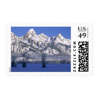 GRAND TETON NATIONAL PARK, WYOMING. USA. Fog & Postage Stamp
