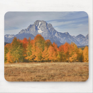 Grand Teton NP, Mount Moran and aspen trees Mouse Pad