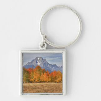 Grand Teton NP, Mount Moran and aspen trees Silver-Colored Square Keychain