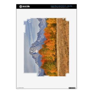 Grand Teton NP, Mount Moran and aspen trees Skin For iPad 3