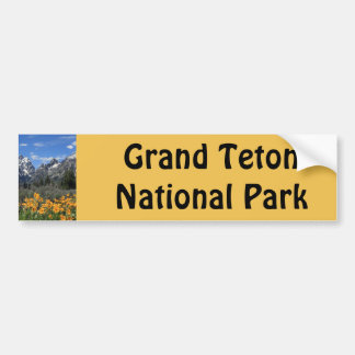 Grand Teton Springtime Souvenir Photo Bumper Sticker