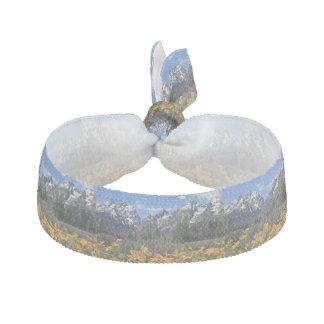 Grand Teton Springtime Souvenir Photo Hair Tie