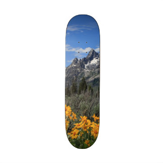 Grand Teton Springtime Souvenir Photo Skate Board Deck
