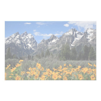 Grand Teton Springtime Souvenir Photo Stationery