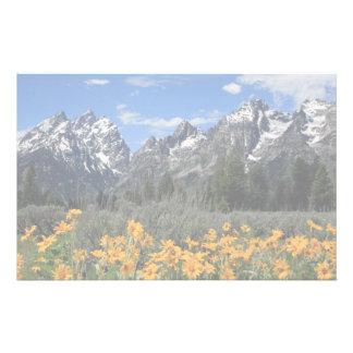 Grand Teton Springtime Souvenir Photo Stationery