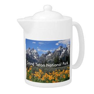Grand Teton Springtime Souvenir Photo