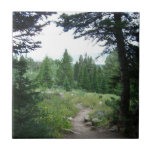 Grand Teton Trail Tile