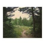 Grand Teton Trail Wood Print
