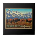 Grand Teton Wyoming Buffalo Ceramic Tiles
