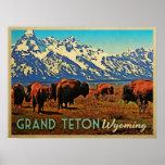 Grand Teton Wyoming Buffalo Poster