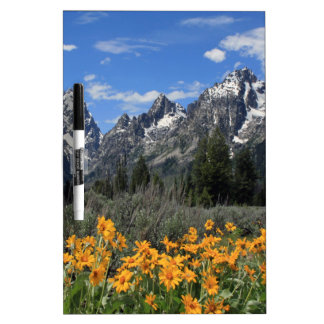 Grand Tetons with Yellow Flowers Dry-Erase Whiteboard
